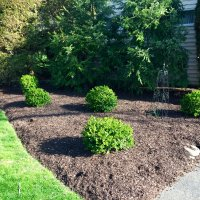 Mulching service in Pottsville Yeagerlandscaping.com